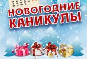 Новогодние каникулы в г. о. Истра в очередной раз богаты на события. Представляем афишу праздничных мероприятий