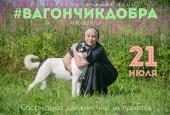 21 июля 11:00 до 15:00 на Воскресенской площадистартует акция по сбору корма для животных из приютов