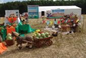 Выставка сельхозтехники и продукции региональных фермеров пройдет в Подмосковье
