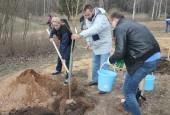 Традиционная акция по посадке деревьев прошла в Гефсиманском саду