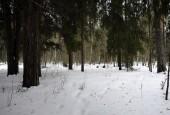 Градостроительный Совет Московской области одобрил инициативу министерства экологии о реорганизации особо охраняемых природных территорий в городском округе Истра.
