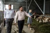 В городском округе Истра состоялся фестиваль сыра