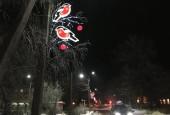 В городском округе Истра активно продолжаются работы по подготовке к приближающемуся Новому году.