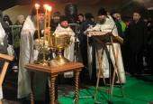 Жители и гости городского округа Истра окунулись в крещенскую прорубь!