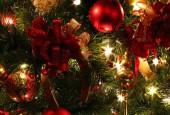 Дорогие жители и гости городского округа Истра! От всей души поздравляем вас с наступающим Новым Годом и Рождеством Христовым!