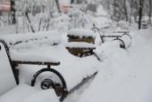 В Истре со снегопадом борются сообща